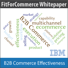 Download the B2B Commerce Whitepaper
