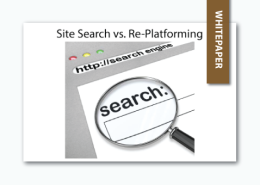site search versus re-platforming whitepaper