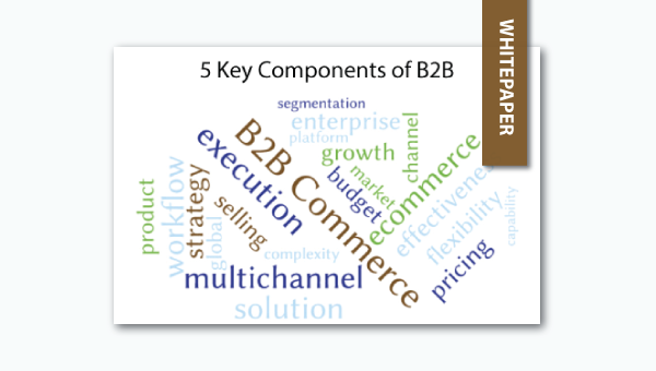 5 key components of b2b ecommerce whitepaper